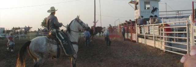 Paradise Creek Rodeo
