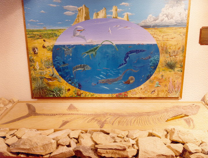 Fossilized Fish & Mural at Fick Fossil & History Museum
